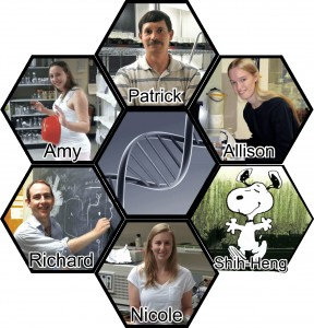 Masson Lab 2013